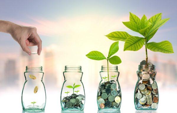 7 עובדות שכדאי לדעת על השקעות