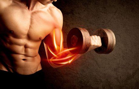 תעשו שריר? 7 סיבות למה מסת השריר לא עולה